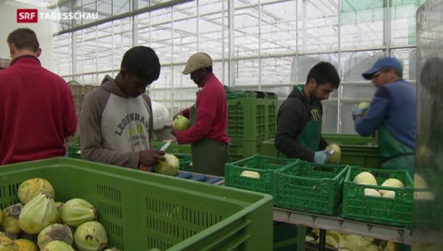 Video «Neues Asylsystem in Bern» abspielen