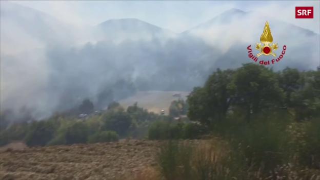 Video «15 freiwillige Feuerwehrleute festgenommen» abspielen