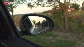 Video «Wo Flüchtlinge auftauchen, sind Schlepper nicht weit» abspielen