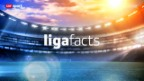 Video ««ligafacts» vom 15.3.2013» abspielen