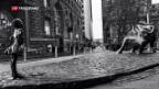 Video «Konkurrenz für die berühmte Bullenstatue in New York» abspielen