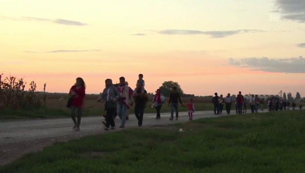 Video «Flüchtlinge auf dem Weg zur kroatischen Grenze (unkomm.)» abspielen