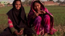 Video «Trailer «Mulhapar»» abspielen