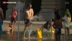 Video «Saharaluft lässt Schweiz schwitzen» abspielen
