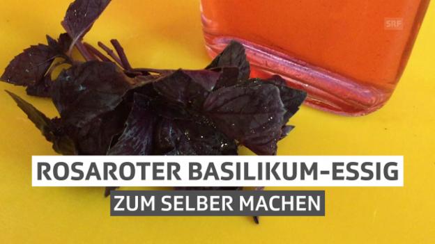 Video «Rosaroter Basilikum-Essig» abspielen