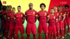 Video «Fussball: Belgien an der WM in Brasilien» abspielen