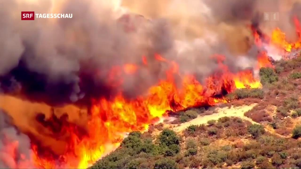 In Kalifornien flüchten 82'000 vor Buschbränden