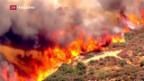 Video «In Kalifornien flüchten 82'000 vor Buschbränden» abspielen