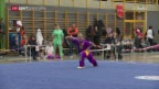 Video «Kampfsport: Wushu in der Schweiz» abspielen