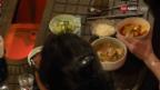 Video «Koreanisch Kochen mit Eve Angst: Jigae mit Kimchi» abspielen