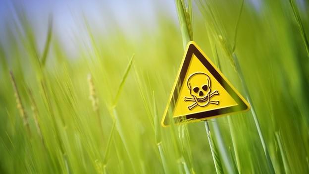 Pestizide im Essen – Wie gefährlich sind die Agrargifte?