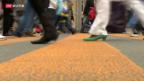 Video «Weniger Tote auf dem Fussgängerstreifen» abspielen