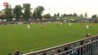 Video «Schweizer Cup: Wie der Erstligist FC Schötz schwarze Zahlen schreiben will» abspielen