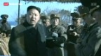 Video «Nordkorea warnt Europäische Staaten» abspielen
