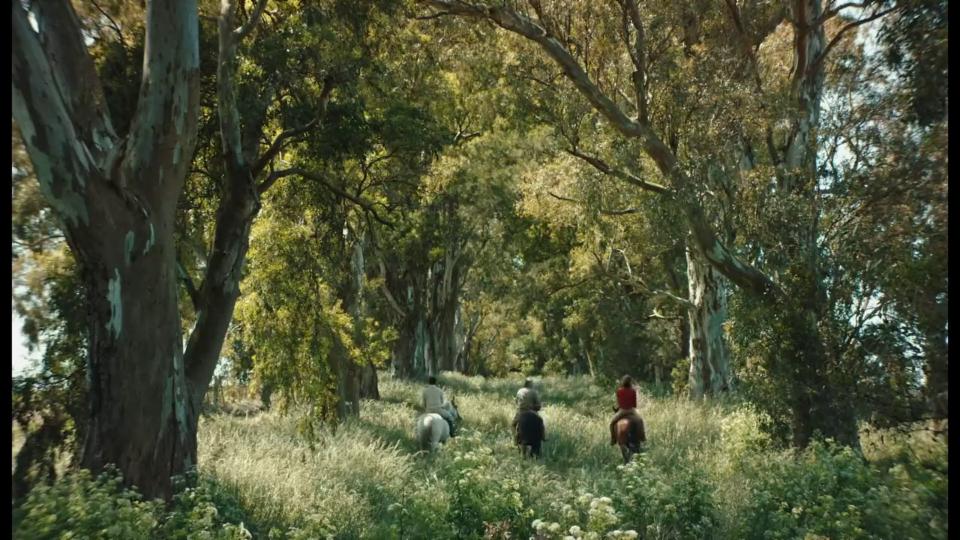 Trailer «Azor»
