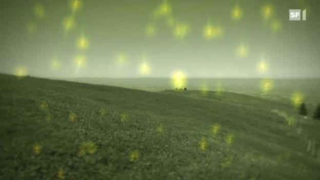 Video «Radioaktivität - von harmlos bis tödlich» abspielen