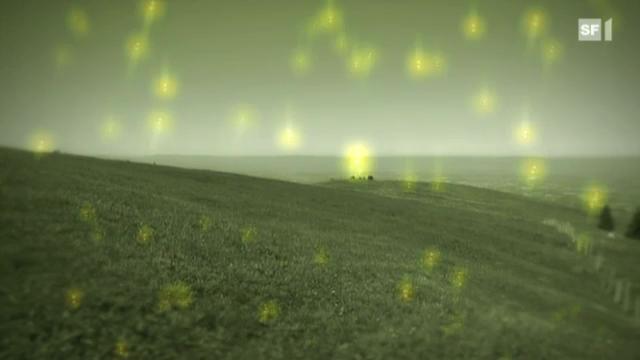 Radioaktivität - von harmlos bis tödlich