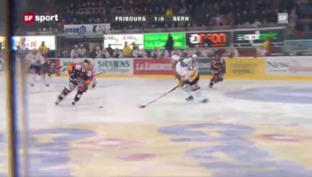 Video «NLA: Fribourg - Bern («sportpanorama»)» abspielen