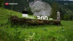 Video «Schweizer Bauern wild auf Landschafts-Kosmetik» abspielen