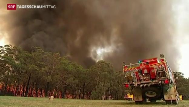 Video «Steigende Temperaturen für Sydney erwartet» abspielen