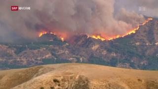 Video «In Kalifornien wüten Waldbrände» abspielen