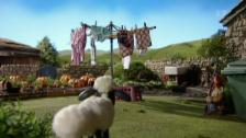 Link öffnet eine Lightbox. Video Shaun das Schaf (25): Der Waschtag abspielen