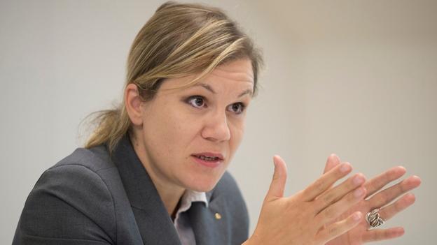 Gemeinderätin Silvia Steidle zum Asbestfund (4.9.2014)
