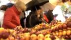 Video «Zibele Märit: Champagner zum Frühstück» abspielen