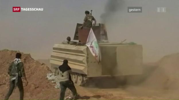 Video «Die Befreiung von Mossul hat begonnen» abspielen