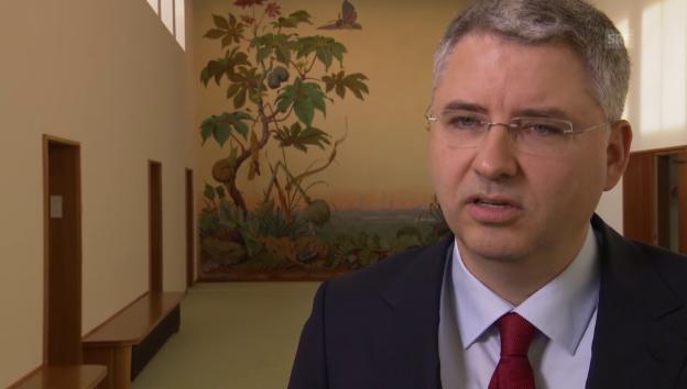 Video «Roche-Konzernchef rechtfertigt Übernahmepreis» abspielen