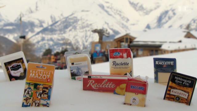 Raclette-Degustation: Welcher Käse ist der beste?
