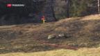 Video «Kampf gegen die Flammen im Südbünden» abspielen
