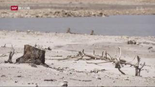 Video «Kapstadt geht das Wasser aus» abspielen