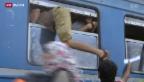 Video «Flüchtlingsansturm» abspielen