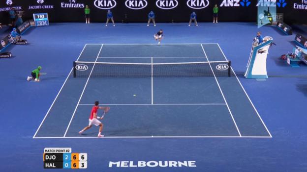 Video «Djokovic verwandelt Matchball gegen Halys» abspielen