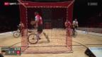 Video «Rad: Hallenradsport-WM in Basel, Radball» abspielen