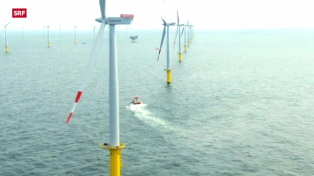 Video «Probleme mit den Windparks» abspielen