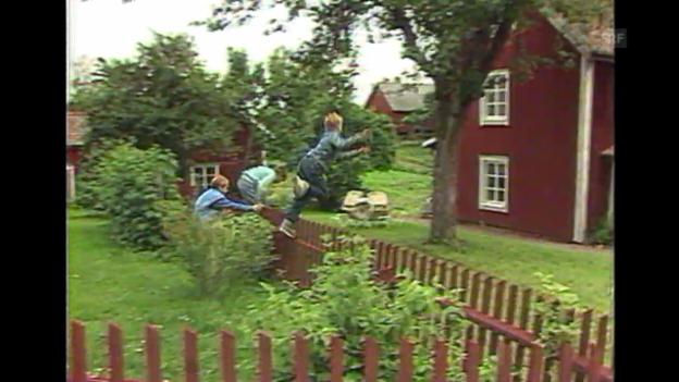Video ««Portrait der Jugendbuch Autorin», Kidz, 21.1.1995» abspielen