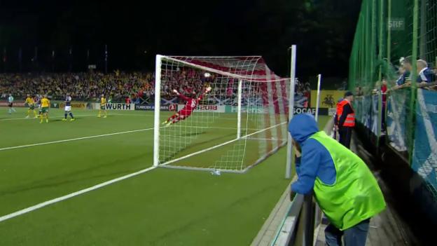 Video «Litauen - Schottland: Die Tore» abspielen