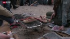 Video «Sechseläutenplatz: Feuerprobe bestanden» abspielen