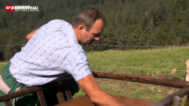 Video «Bauer Buff über den Lediwagen» abspielen