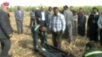 Video «Tragischer Ballon-Unfall in Ägypten» abspielen