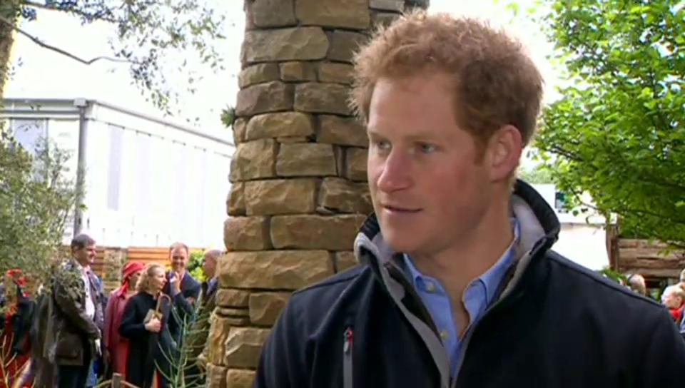Prinz Harry freut sich auf seine Familie