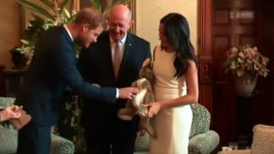 Video «Royal-Baby-Euphorie in Down Under» abspielen