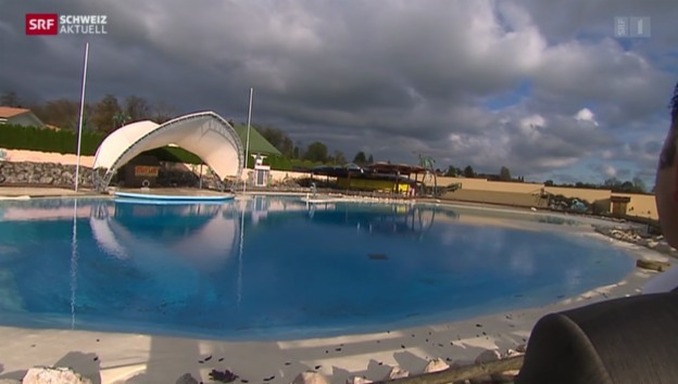 Video «Delphin gestorben» abspielen