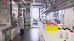 Video «Clariant kämpft mit starkem Franken» abspielen