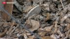 Video «Schadstoffbelastung in der Schweiz bleibt hoch» abspielen