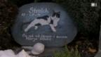 Video «Der teure Abschied vom Haustier» abspielen
