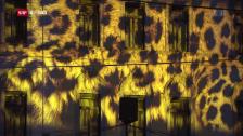 Video «Locarno: Weshalb man die Festival-Filme nicht im Kino sieht» abspielen