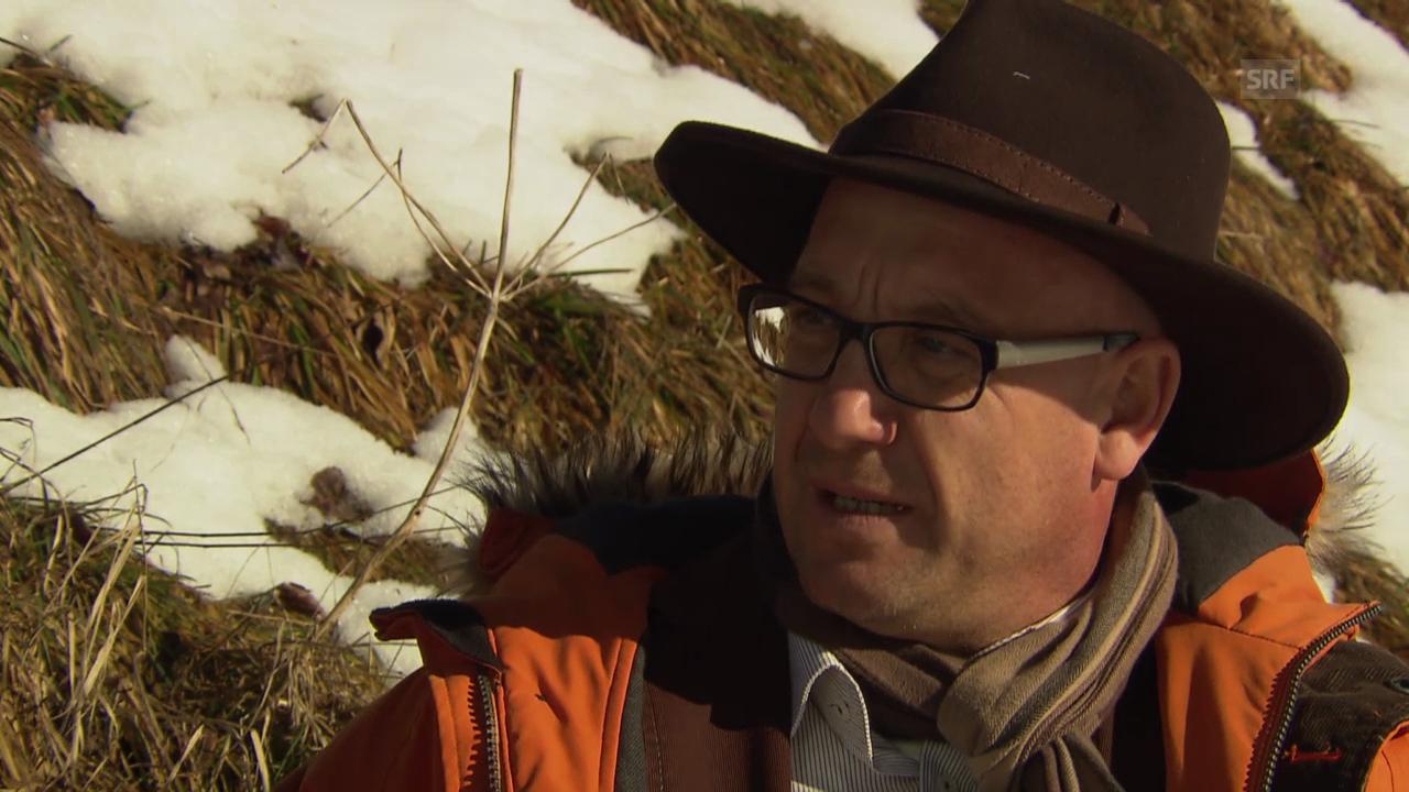 Stefan Selke: Leben oder Logging? (SRF)